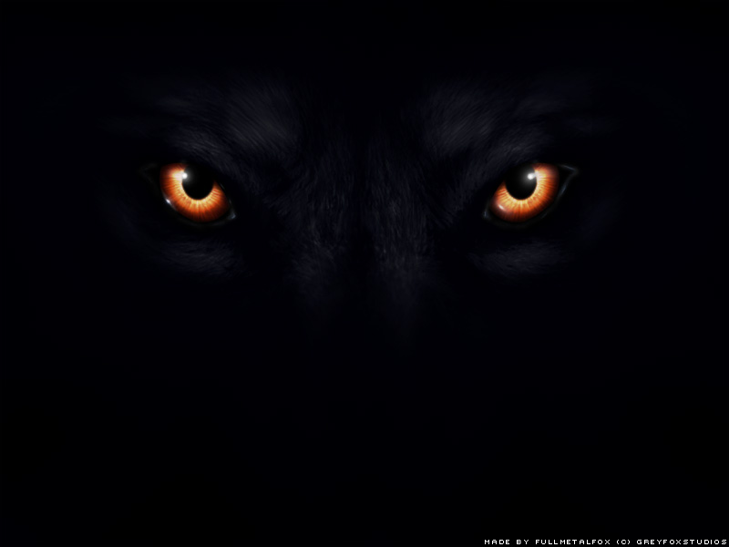 Angry black wolf red eyes - photo#23